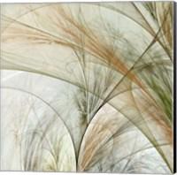 Framed Fractal Grass III