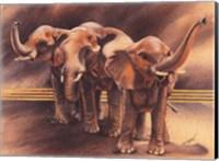 Framed Family of Elephants