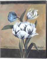 Framed White Tulips I