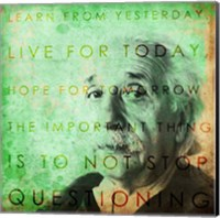 Framed Einstein – Live & Learn Quote