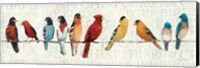 Framed Usual Suspects - Birds on a Wire