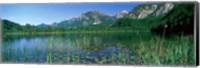 Framed Alpsee Bavaria Germany