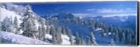 Framed Alpine Scene, Bavaria, Germany