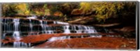 Framed Waterfall in a forest, North Creek, Zion National Park, Utah, USA