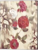 Framed Ikat Rose II