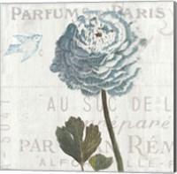Framed Floral Messages on Wood I Blue