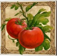 Framed Tomatoes