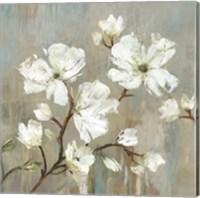 Framed Sweetbay Magnolia I