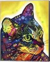 Framed Confident Cat