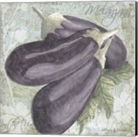 Framed Buon Appetito Eggplant