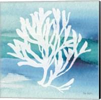 Framed Sea Life Coral I