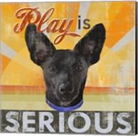 Framed Dog Days - Liittle Black Pup