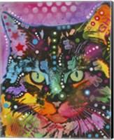 Framed Cat 13