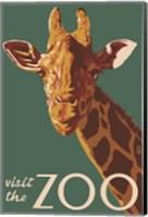 Framed Visite The Zoo Giraffe