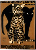 Framed Zoo Big Cats