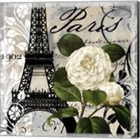 Framed Paris Blanc I