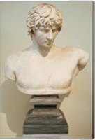 Framed Antinous Bust, Statue, Athens, Greece