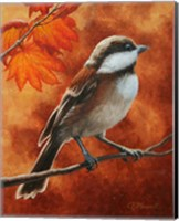 Framed Autumn Chickadee