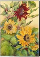 Framed Rust Sunflower
