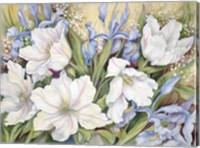 Framed White Tulips/ Blue Iris