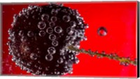 Framed Cherry Covered In Water Drops V