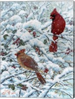 Framed Winter Cardinal Painting