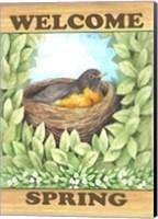 Framed Welcome Spring Robin
