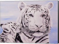 Framed White Tiger and Cub