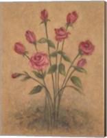 Framed Bunch of Red Roses