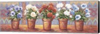 Framed Row Of Flower Pots - A