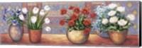 Framed Row Of Flower Pots - B