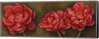 Framed Summer Blossoms 1