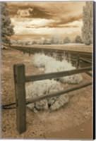 Framed Fence & Road, Albuquerque, New Mexico 06