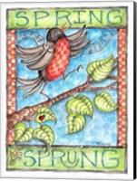 Framed Spring has Sprung