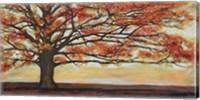 Framed Red Oak