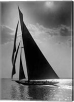 Framed Vanitie during the America's Cup, ca. 1900-1910