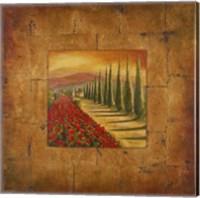 Framed Bella Toscana I