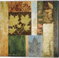 Framed August Leaves II