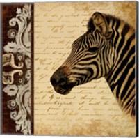 Framed Madagascar Safari II