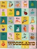 Framed Woodland Alphabet