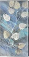 Framed Silver Leaves II