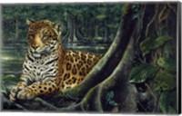 Framed Jaguar By The River