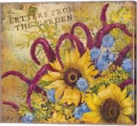Framed Letters from the Garden II