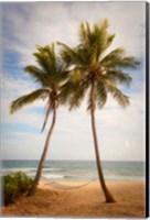 Framed Yasawa Island Resort and Spa, Fiji