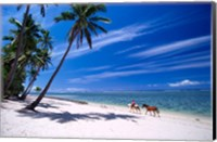 Framed Girl on Beach and Coconut Palm Trees, Tambua Sands Resort, Fiji