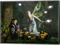 Framed Knight And The Faerie