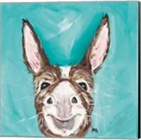 Framed Mr. Donkey