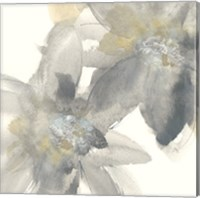 Framed Gray and Silver Flowers II