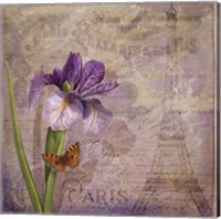 Framed Ville de Paris I