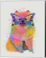 Framed Rainbow Splash Pomeranian